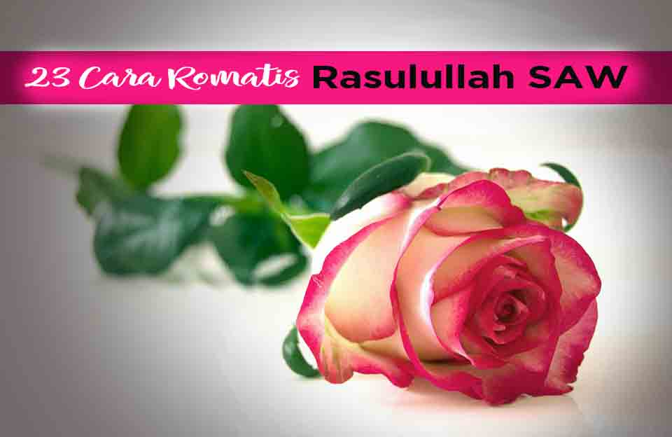 Rose 301406 960 720